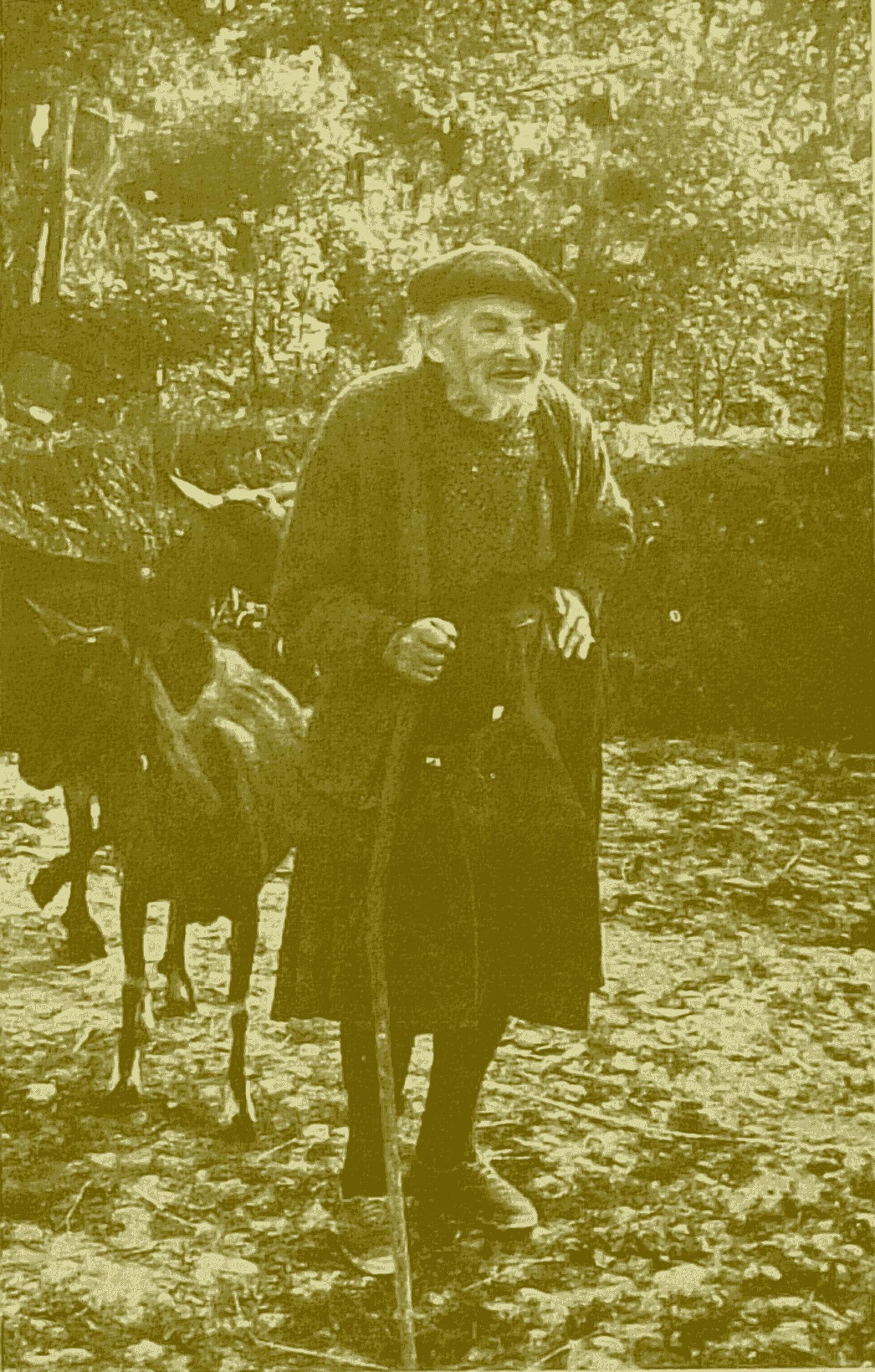 Bergère de CHAMPAGNE-ST-HILAIRE (cl. M. Valière)