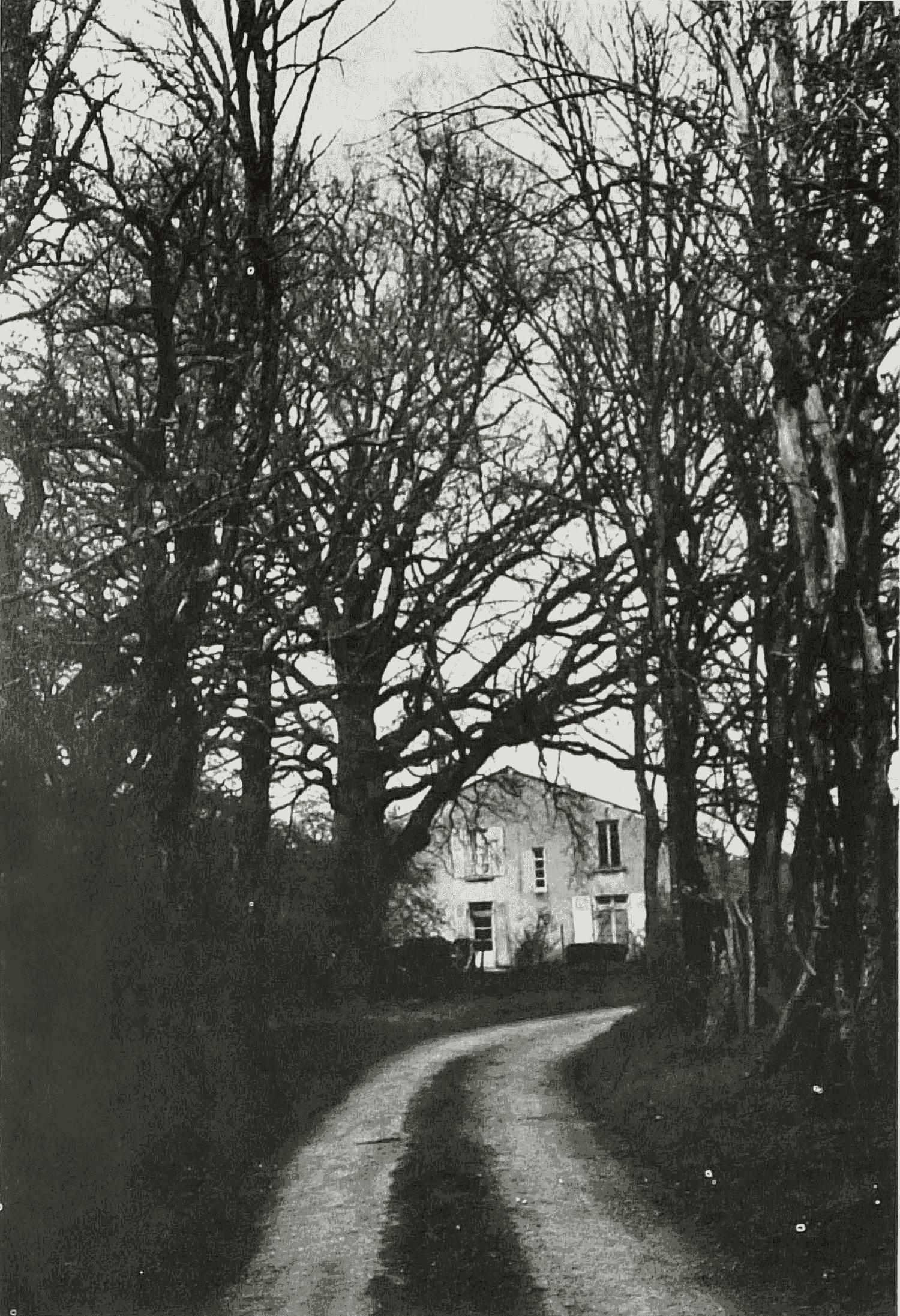 Au bout du chemin la maison de Solange Sainturat à Marché-Grugeau. Cliché Monique Leyssène. 13 avril 1983.